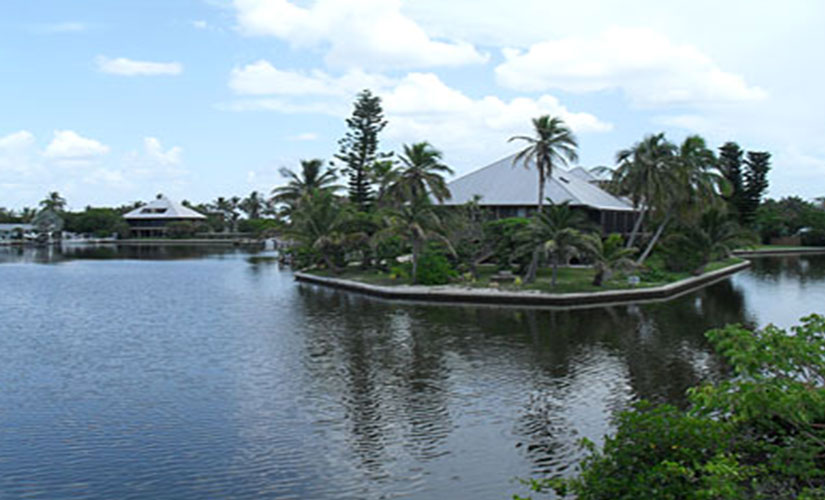 Little Pine Island Florida Real Estate